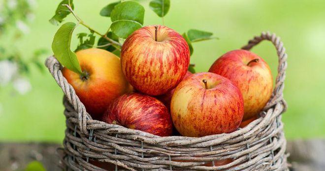 Разгрузочный день на зеленых яблоках