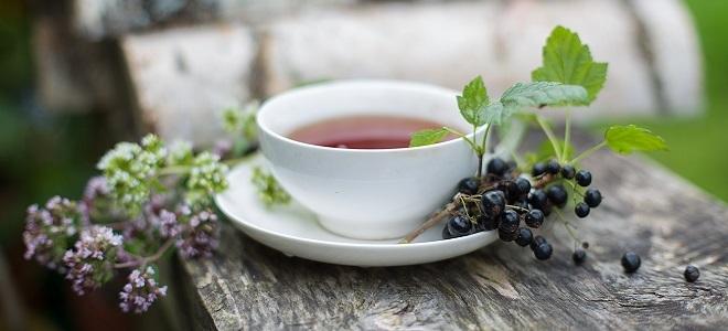 чай из листьев смородины польза