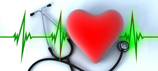 Как укрепить сердечную мышцу в домашних. - Лечим сердце 346