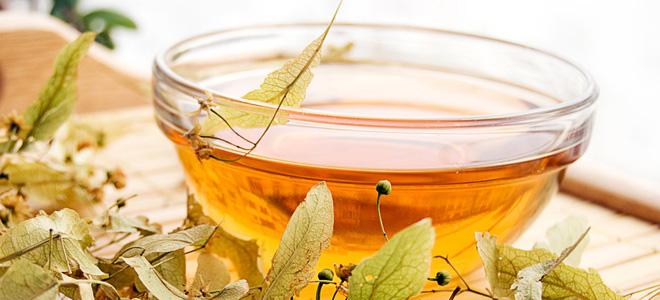 липовый чай польза и вред