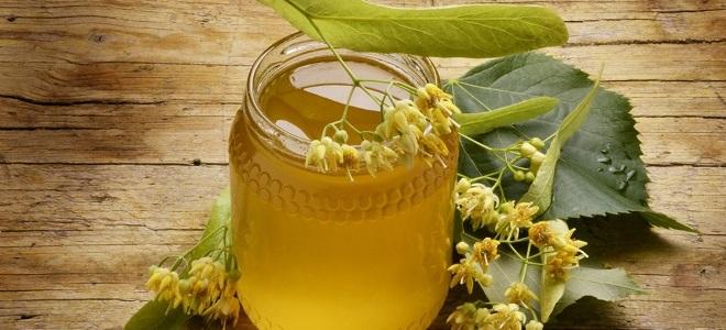 Липовый мед лечебные свойства и противопоказания