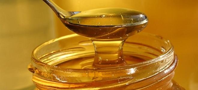 медовая лепешка от кашля2