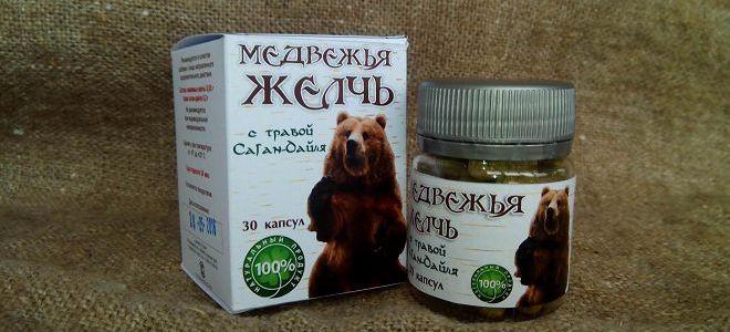 Медвежья желчь - лечебные свойства и противопоказания, чем полезна ...