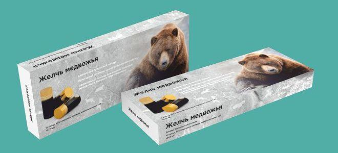медвежья желчь лечебные свойства и противопоказания2