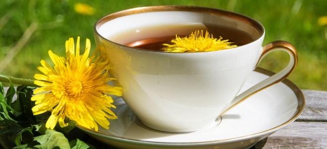 Настойка из цветков одуванчика на водке, на спирту, на тройном одеколоне. Как приготовить, применение