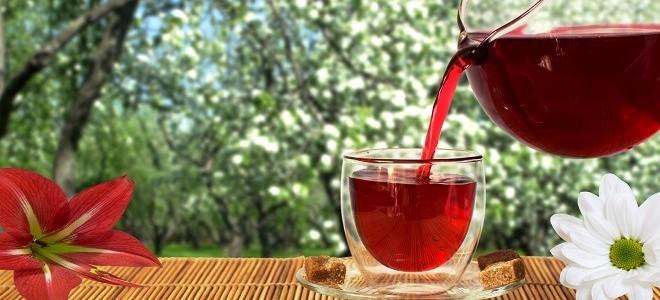 настойка лимонника польза и вред