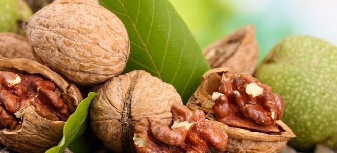 Перегородки грецкого ореха лечебные свойства при сахарном диабете