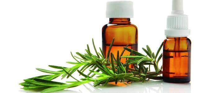 Пихтовое масло - лечебные свойства и противопоказания, лечебные свойства и применение в ароматерапии