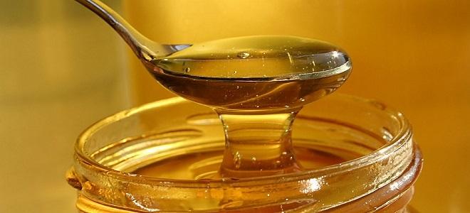 До какой температуры можно нагревать мед: советы и рекомендации. Можно ли нагревать мед и теряет ли он полезные свойства