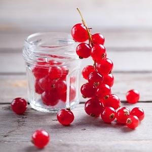 Витамины в черной и красной смородине. Какие витамины в смородине: польза и лечебные свойства