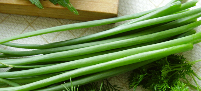 зеленый лук полезные свойства