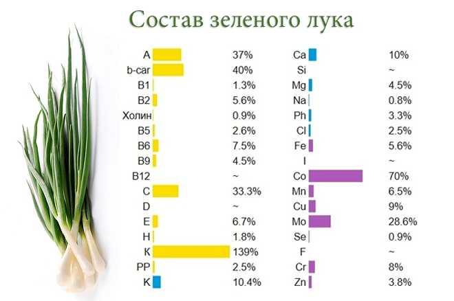 зеленый лук состав