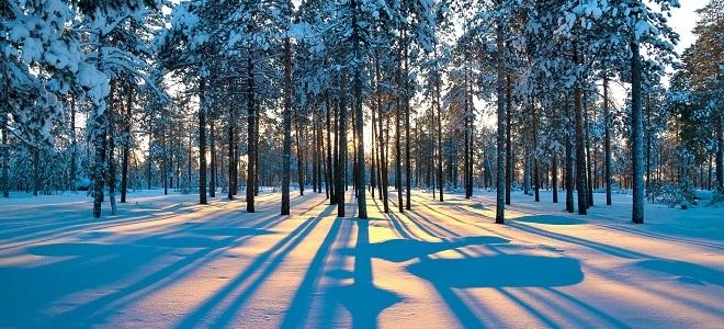 Народные приметы на урожай нашем крае. Русские народные зимние приметы на урожай