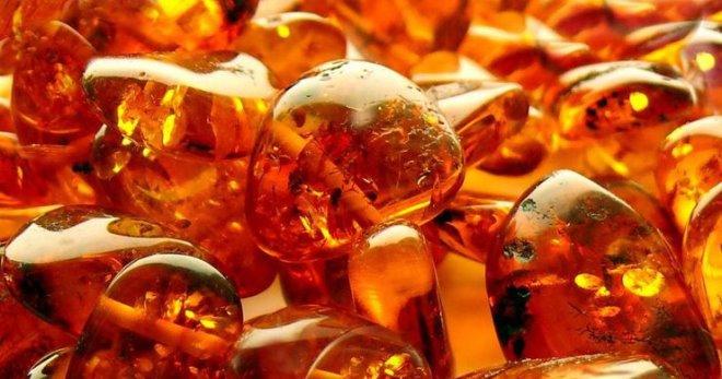 Янтарная кислота – панацея или эффект плацебо?