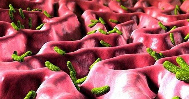 Народные способы лечения хеликобактер пилори