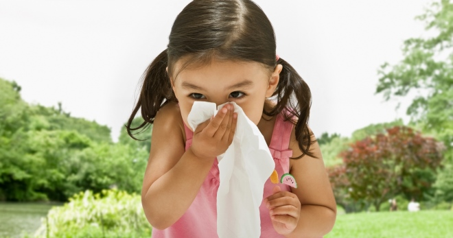 Анализы на аллергены у детей – лучшие способы узнать, на что аллергия у ребенка