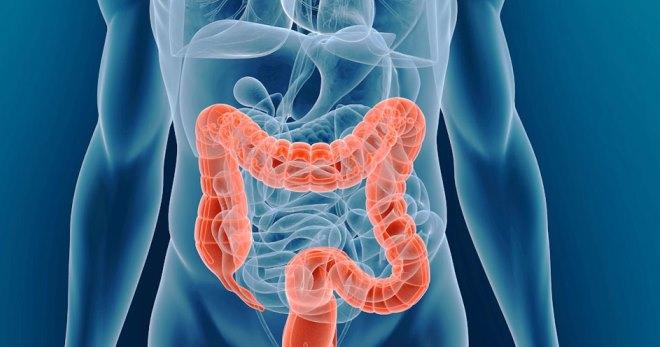 Колоноскопия кишечника – подготовка к процедуре, колоноскопия под наркозом, диета перед колоноскопией