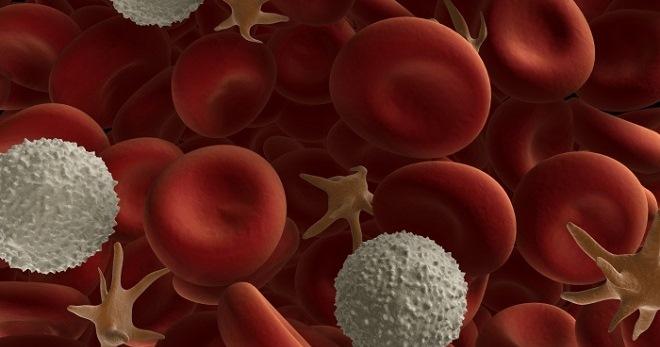 Норма тромбоцитов у детей, что означают повышенные и пониженные тромбоциты в крови у ребенка