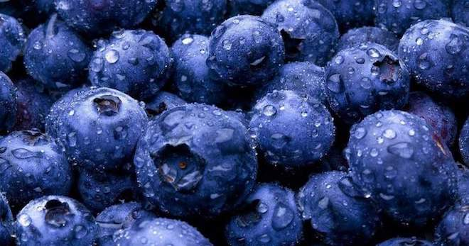Голубика – полезные свойства и противопоказания для женщин, о которых вы не знали