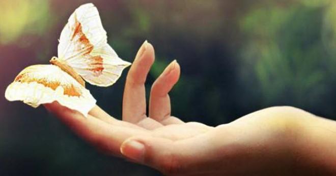 Что такое болезнь бабочки как проявляется синдром