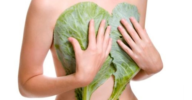 Мастопатия – лечение народными средствами в домашних условиях. Лечение мастопатии народными средствами – рецепты которые помогли