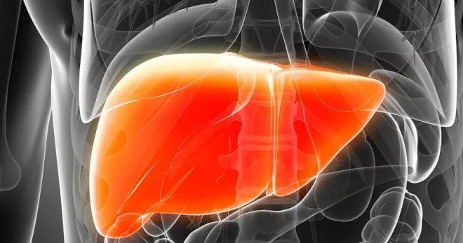 Симптомы гепатита – все признаки хронического и острого течения болезни