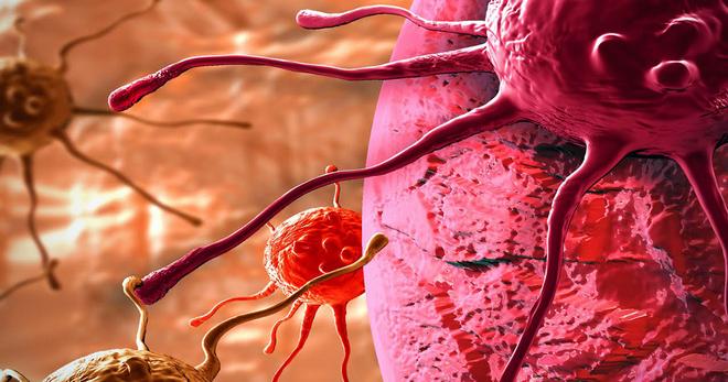 Средство от рака найдено