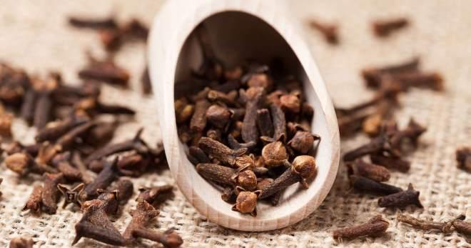 Гвоздика – лечебные свойства и противопоказания, полезные свойства гвоздики, применение в народной медицине, масло гвоздики