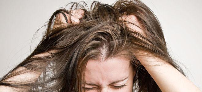 Волосистой части головы на