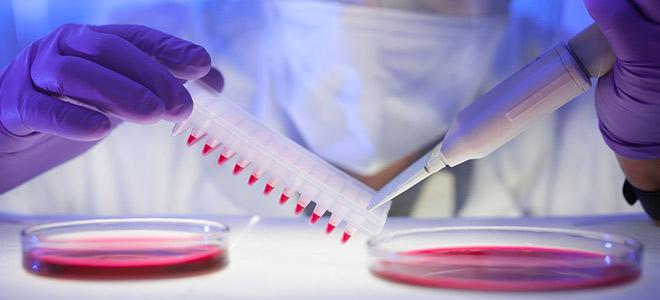 Иммуностимулирующие препараты при онкологии