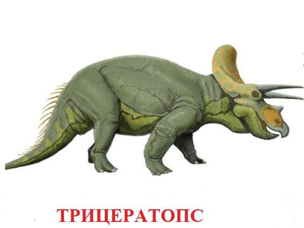динозавры для детей фото