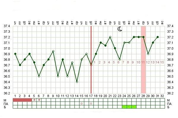 Вагинальная температура при беременнсти