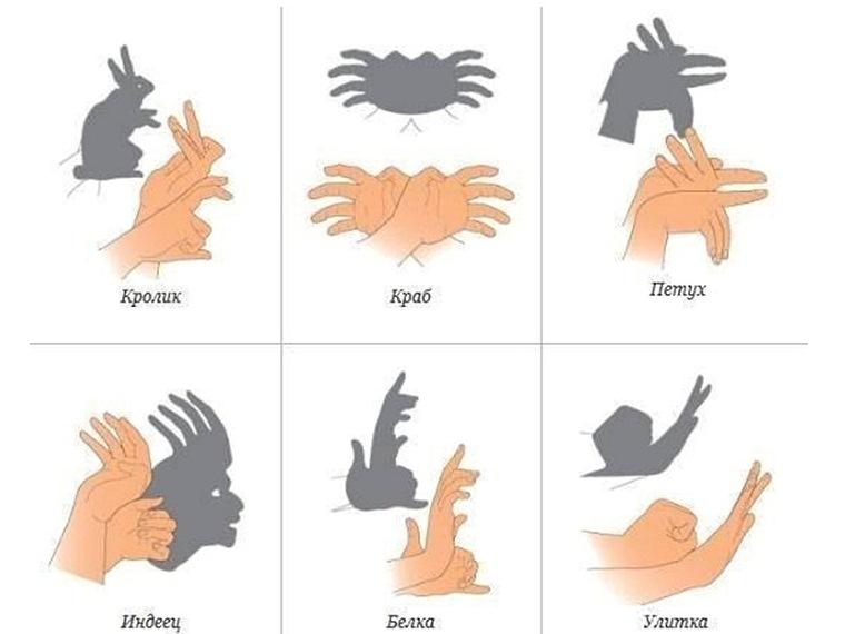 руками своим на фото стене тени