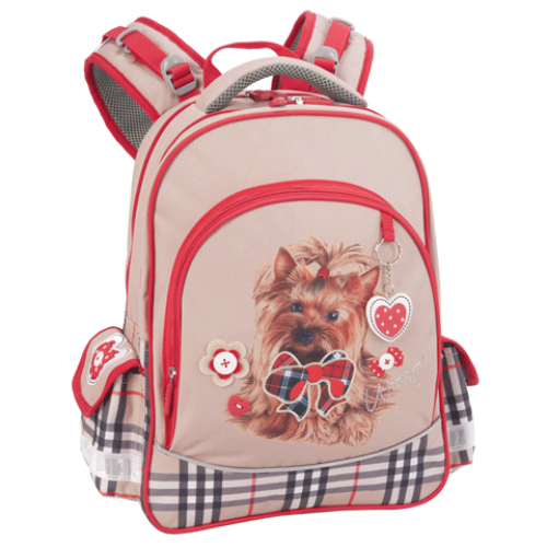 Рюкзаки для 5 11 классов купить женскую сумку-рюкзак трансформер в екатеринбурге
