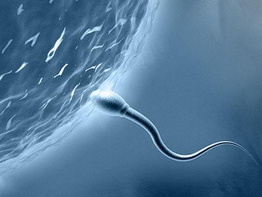 Количество спермы чтобы залететь