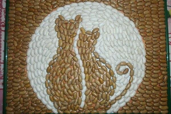 Картинки от литьевого основы из семечек тыквы и фасоли, картинки