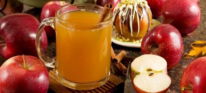 Как сделать яблочный сидр фото 303