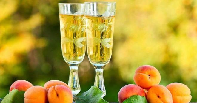 Наливка из абрикосов в домашних условиях - самые вкусные рецепты сладкого алкогольного напитка