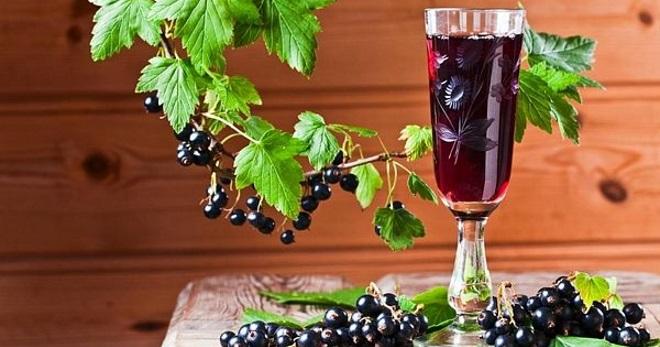Настойка из черной смородины - лучшие рецепты приготовления домашнего алкоголя