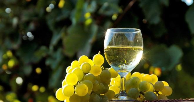 Вино из белого винограда - восхитительно вкусные рецепты алкоголя в домашних условиях