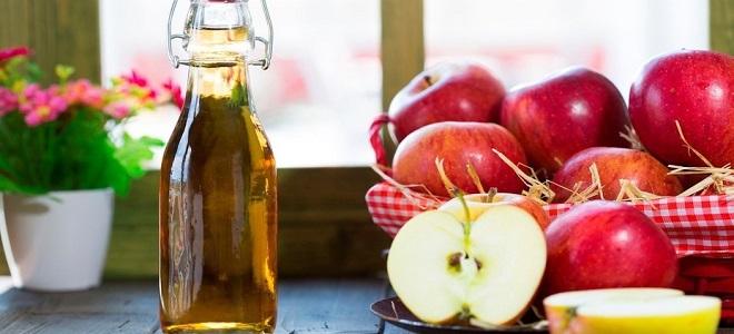 Домашнее крепленое вино из яблок