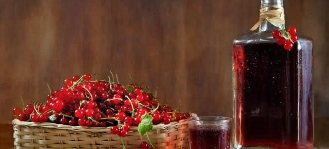 домашнее вино из калины простой рецепт