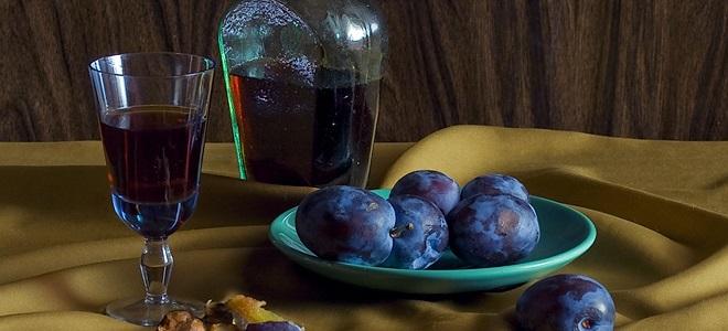 Домашнее вино из сливы с косточками