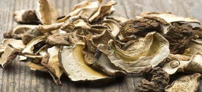 Как правильно чистить грибы зонтики — Сайт о даче