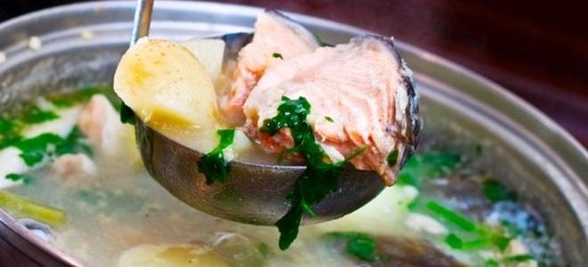 Сколько варить рыбу разных видов и сортов?