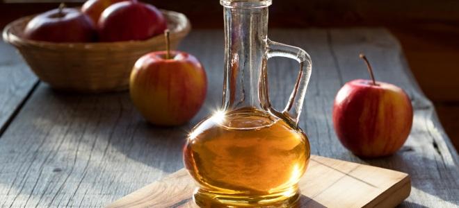 кальвадос из покупного яблочного сока