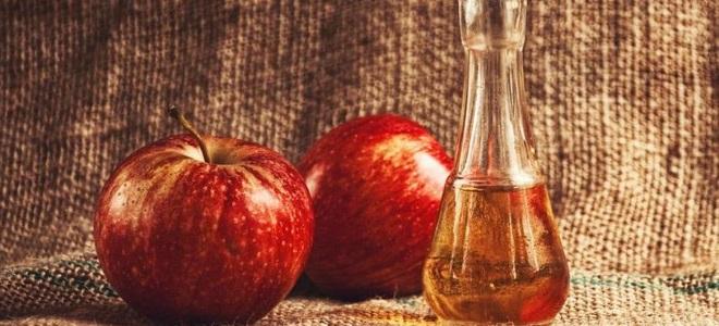 кальвадос в домашних условиях из яблочного самогона