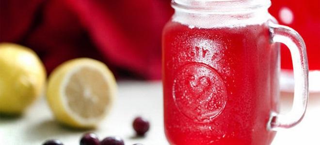 Клюквенный кисель – рецепт из замороженной клюквы