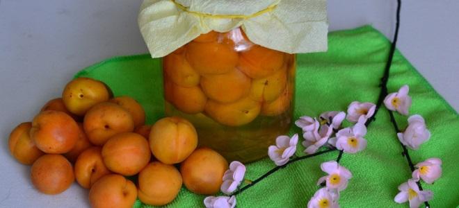 компот из абрикосов на зиму простой рецепт