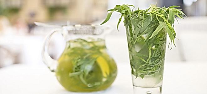 как приготовить напиток из растения тархун